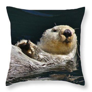 Sea Otter Throw Pillow by Sean Griffin