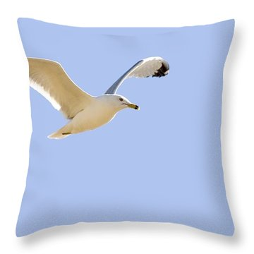 Seagull In Flight Throw Pillow by Don Hammond