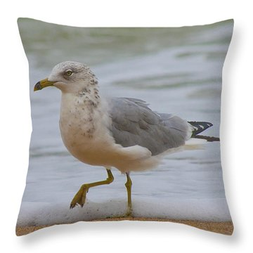 Seagull Stomp Throw Pillow by Betsy Knapp