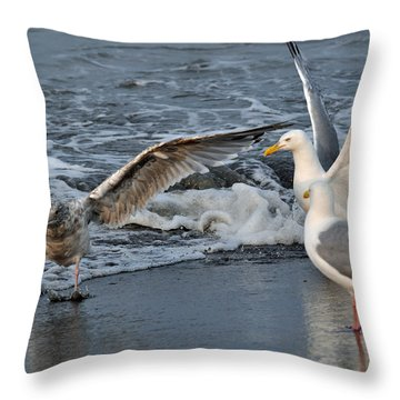 Seagull Treasures Throw Pillow by Debra  Miller