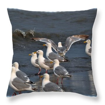 Seagulls Gathering Throw Pillow by Debra  Miller