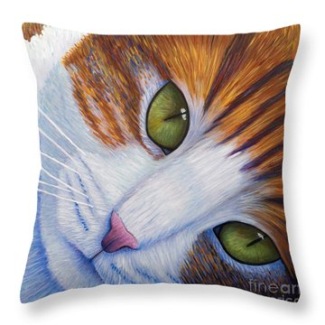 Secrets Throw Pillow by Brian  Commerford
