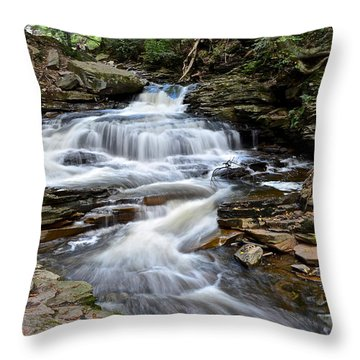 Seneca Falls Throw Pillow by Frozen in Time Fine Art Photography