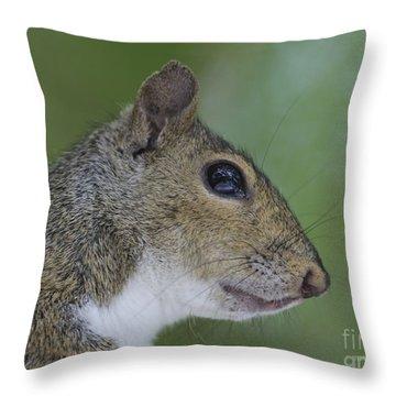 Serious Pondering Throw Pillow by Deborah Benoit