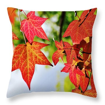 Shades Of Red Throw Pillow by Kaye Menner