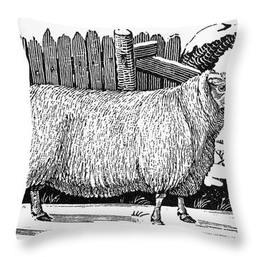 Sheep, 1788 Throw Pillow by Granger
