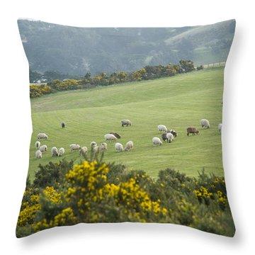 Sheep Graze On The Otago Peninsula Throw Pillow by Bill Hatcher