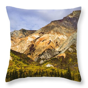 Sheep Mountain Along Glenn Highway Throw Pillow by Yves Marcoux