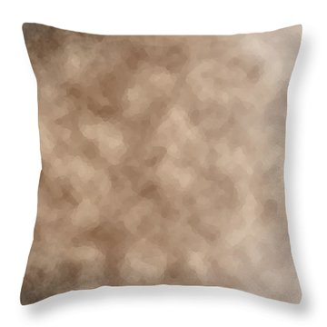 Shrouded Mystery Throw Pillow by Christopher Gaston