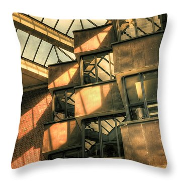 Single Scholar Throw Pillow by Joan Carroll