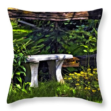 Sit A Spell Throw Pillow by Steve Harrington