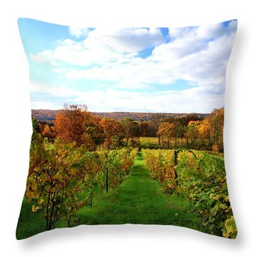 Six Miles Creek Vineyard Throw Pillow by Paul Ge