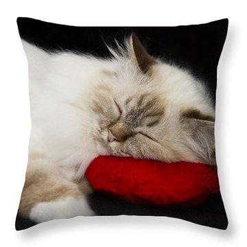 Sleeping Birman Throw Pillow by Melanie Viola