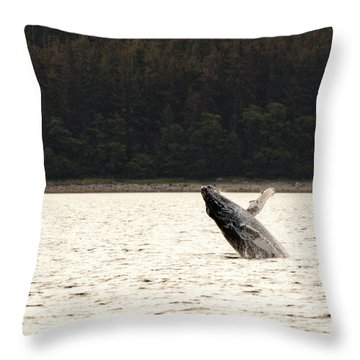 Small Breaching Whale Throw Pillow by Darcy Michaelchuk