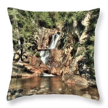 Small Falls Throw Pillow by Brenda Giasson