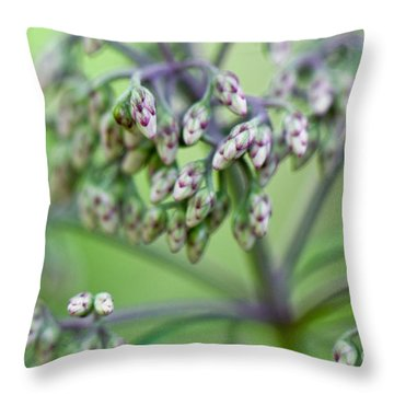 Small World Throw Pillow by Lois Bryan