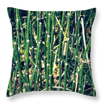 Snake Grass On The Beach Throw Pillow by Michelle Calkins