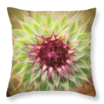 Soft As A Thistle Throw Pillow by Amy Tyler