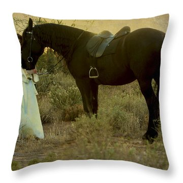 Solace Throw Pillow by Jean Hildebrant