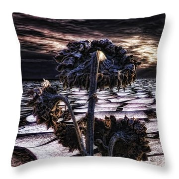 Solitude Throw Pillow by Mo T