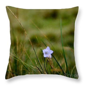 Solo Throw Pillow by Isabella Abbie Shores