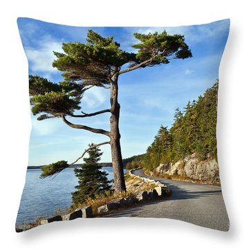 Somes Sound Maine Throw Pillow by John Greim