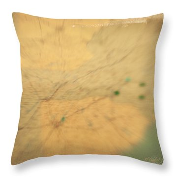 Southeast Us Throw Pillow by Paulette B Wright