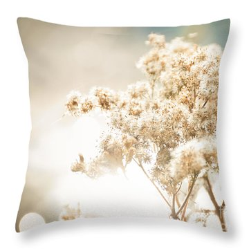 Sparkly Weeds Throw Pillow by Cheryl Baxter