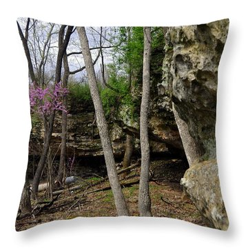 Spingtime Throw Pillow by Marty Koch