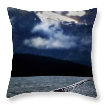 Splash From Tail Of Humpback Whale Throw Pillow by Richard Wear