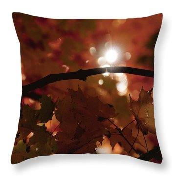 Spotlight On Fall Throw Pillow by Cheryl Baxter