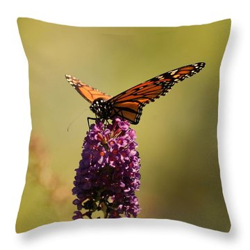 Spread Your Wings And Fly Throw Pillow by Angie Tirado