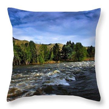 Spring Flow Throw Pillow by Robert Bales