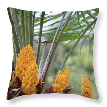Spring Fruit Throw Pillow by Suzanne Gaff
