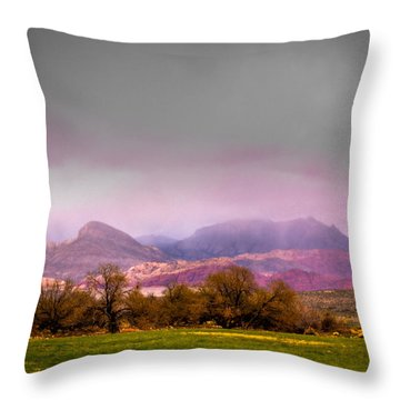 Spring Mountain Ranch In Red Rock Canyon Throw Pillow by David Patterson
