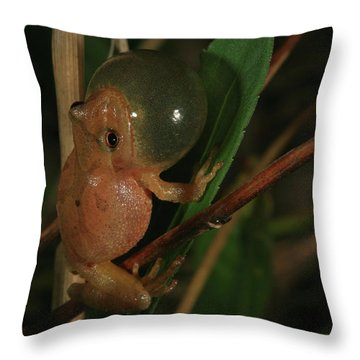 Spring Peeper Throw Pillow by Bruce J Robinson