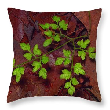 Spring Will Come Throw Pillow by Judi Bagwell