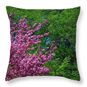 Springtime Throw Pillow by Lisa Phillips