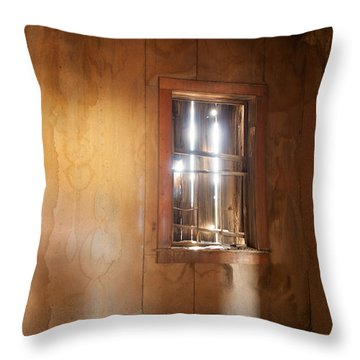 Stains Of Time Throw Pillow by Fran Riley