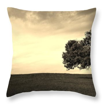 Stand Alone Tree 1 Throw Pillow by Sumit Mehndiratta
