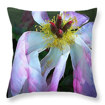 Stepping It Up Throw Pillow by Shirley Sirois