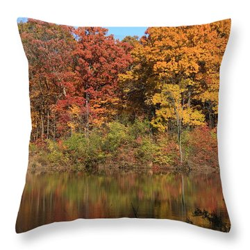 Sterling Pond Throw Pillow by Lyle Hatch