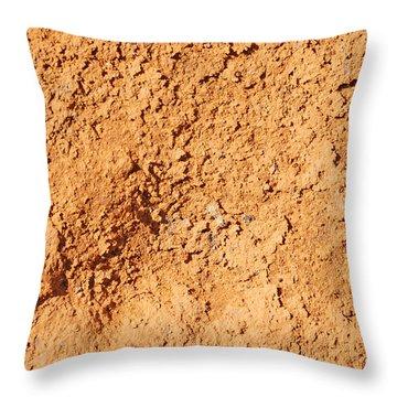 Stone Texture Throw Pillow by Matthias Hauser