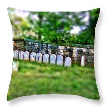Stones River Battlefield Throw Pillow by EricaMaxine  Price