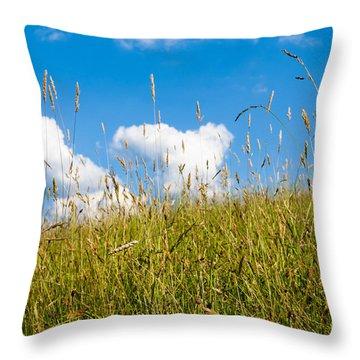 Summer Serenity Throw Pillow by Thomas R Fletcher