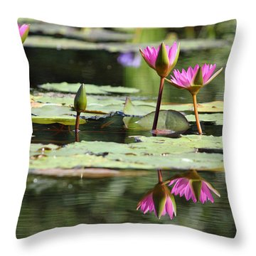 Summertime Magic Throw Pillow by Suzanne Gaff