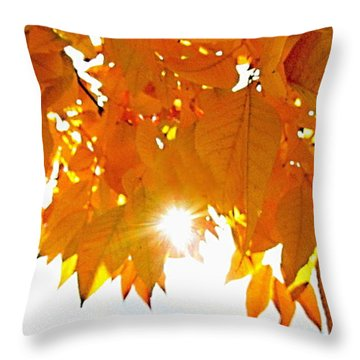 Sun Kissed  Deciduous Throw Pillow by Danielle  Parent