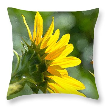 Sunflower 3 Throw Pillow by Pamela Cooper