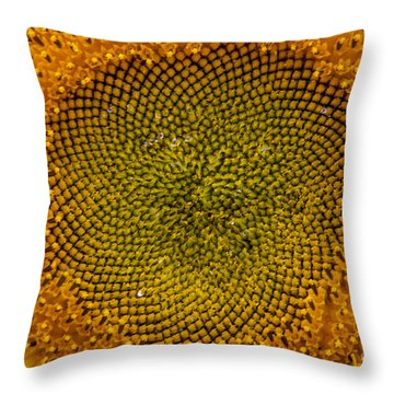 Sunflower Center Throw Pillow by Darleen Stry