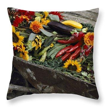Sunflowers, Dahlias, Eggplants, Pepper Throw Pillow by Jonathan Blair